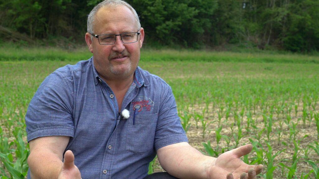 SVP-Bauer Daniel Lehmann gibt inmitten seines Maisfeldes ein Interview